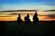 DSC_7848_new horse_2.jpg