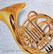 French Horn_www.jpg