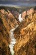 Yellowstone Falls in Summer.jpg
