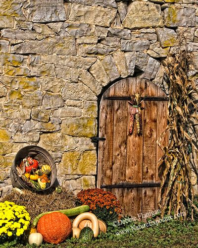 Autumn Door - AME-0030.jpg