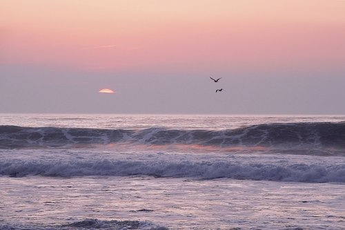 Seascapes -1.jpg