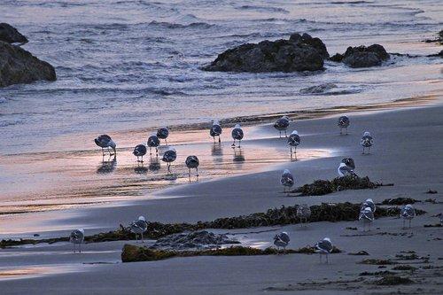 Seascapes -10.jpg