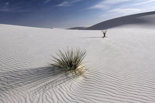 white sands A.jpg