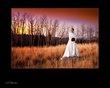 Sunset Mountain Beauty.jpg