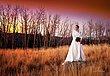 Wedding Portfolio-001.jpg