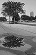citytree1cra.jpg