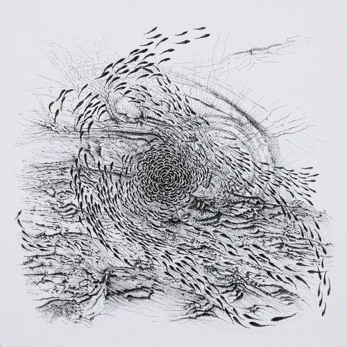 Murray Hart-pencil.jpg