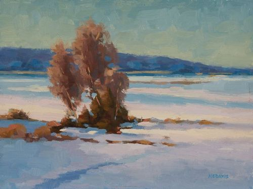 Nancy Davis-oil-WINTER COLOR.jpg