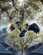 Raven Circle.jpg