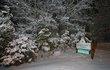 Canyon Center Snow   2.jpg