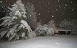 Canyon Center Snow   4.jpg