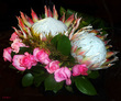 Protea and Roses.jpg