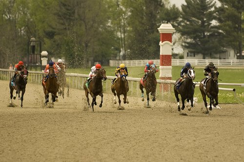 Horseracing 112 web.jpg