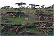 11Tanz.Kuratu.Plantation_2629.jpg