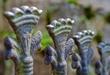 Kingly Fence.jpg