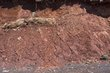 3964 -Mud Cracks -Cliffs of East Bay.jpg