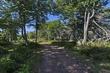 _MG_5384  -Eatonville Hiking Trl -Web.jpg