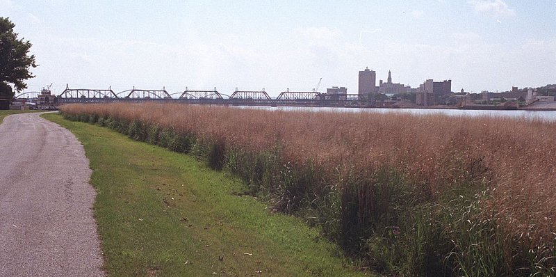 BRIDGE~2.jpg :: Views of Mississippi during spring flood of 2002. Views of Davenport and travel down to Muscatine.
