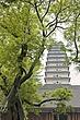 Small Wild Goose Pagoda 2.jpg