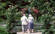 10M18 Cleveland Botanical Garden.jpg