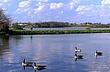 1B153 Clark Lake Wildlife Area.jpg