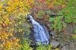 D30A-45-Brandywine Falls.jpg