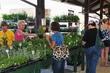 D38T-7-Toledo Farmers Market Flower Days.jpg
