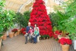 D91L-74-Holidays at the Conservatory.jpg