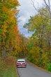 FX103T-170-Fall Festival of Leaves.jpg