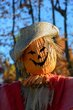 FX24D-204-Fall Farm Days.jpg