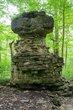 FX85A-202-Glen Helen Nature Preserve.jpg