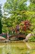 D20M-117-Schedel Arboretum  Gardens.jpg