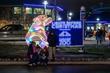 FX1F-1847-Lights Before Christmas.jpg