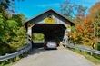FX1J-227-Doyle Road Covered Bridge.jpg