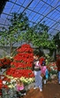 9U34-Krohns Conservatory.jpg