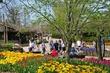 D1F-603-Cincinnati Zoo Blooms.jpg