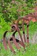 D2M-28-Gardens at Gantz.jpg