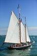 D10-I-447-Tall Ships Festival.jpg