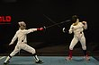 D29W-1859-Arnold Fencing Classic.jpg