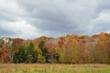 FX10A-998-Hocking Hills.jpg