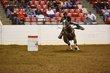 FX12T-379-All American Quarter Horse Congress.jpg