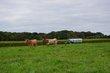 FX33A-183-Mill Creek Metro Park Farm.jpg