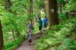 FX69A-138-Mohican State Park.jpg
