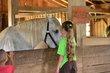 FX12D-232-Slate Run Historical Farm.jpg