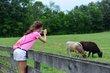 FX12D-252-Slate Run Historical Farm.jpg