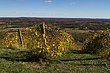 Bluemont Vineyards-13-11-3-04.jpg