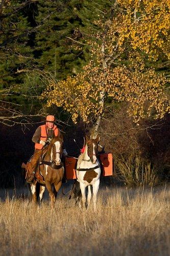 ©TC-Hunter Horseback-D89994-00015.jpg