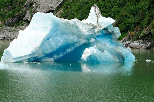 Alaska2008_Misc065.jpg