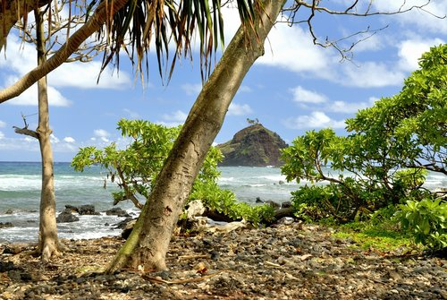 Maui_002.jpg