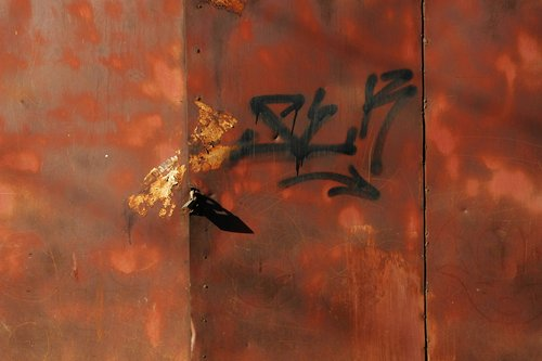 Mysteries Of China - Untitled 5 - 20x24 Archival Inkjet Print - Edition 5.jpg